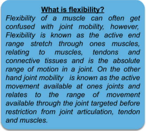 What is flexibility