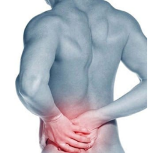 HTC Blog - Sacroiliac Joint - Back Pain